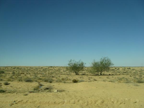 Тунис. Поездка в Сахару