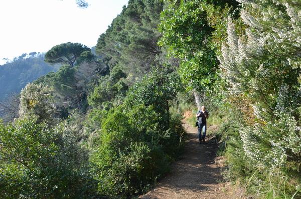 Южный склон полуострова Портофино