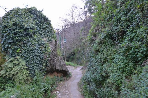 Спуск по тропе к Портофино