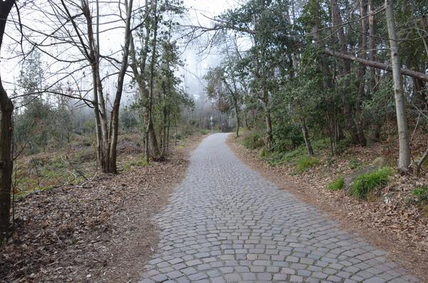 Дорога над Риомаджоре