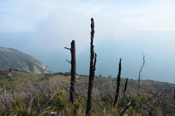 Тропа от Портовенере-Риомаджоре