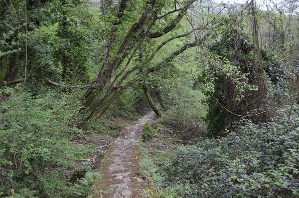 Тропа к Сан-Рокко