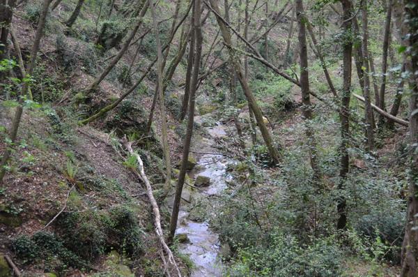 Парк Портофино, тропа к Сан-Рокко