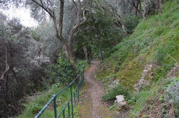 Мыс Портофина, лесная тропа