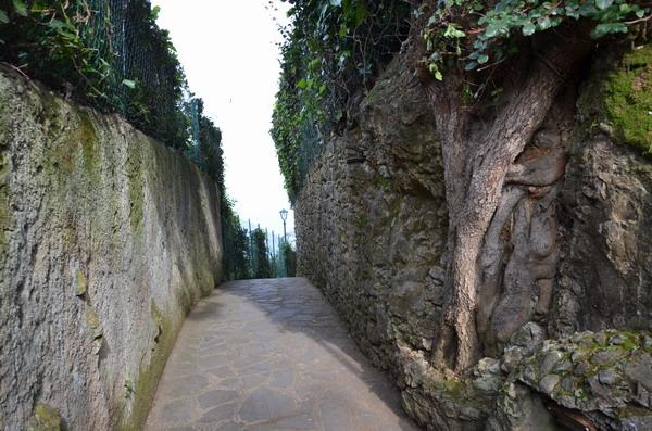 Виллы в Портофино
