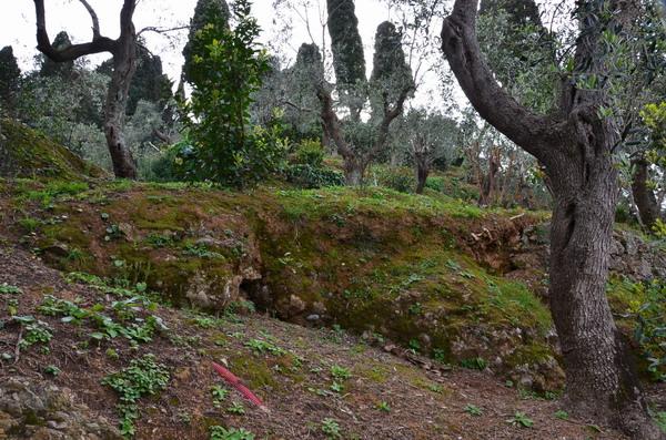 Склоны Портофино