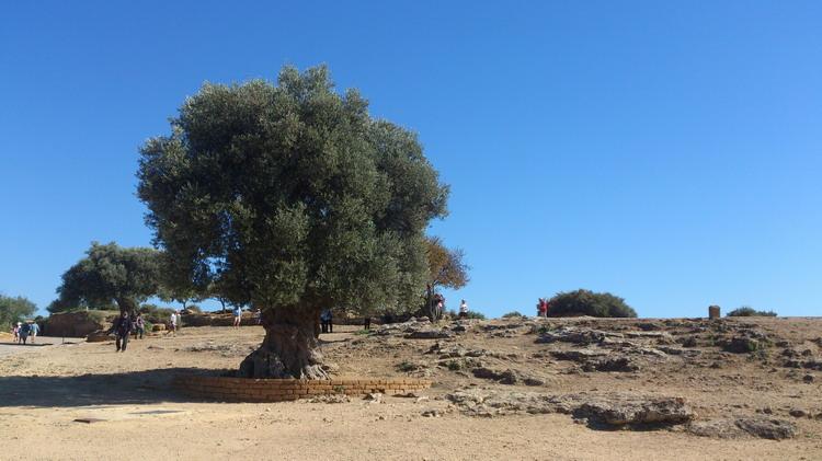 Долина Храмов