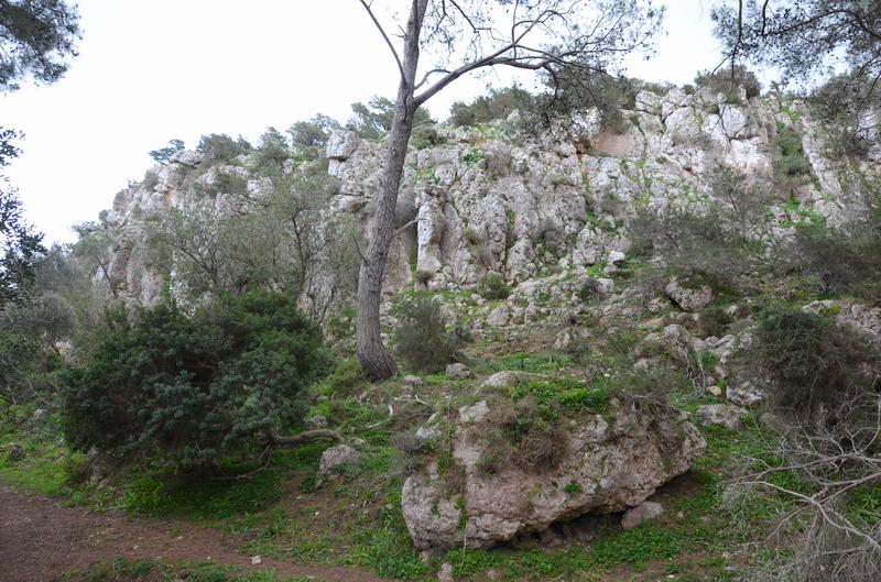 Акамас тропа Адониса