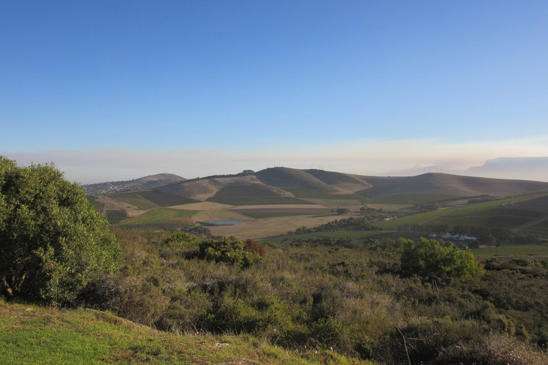 окрестности Кейптауна