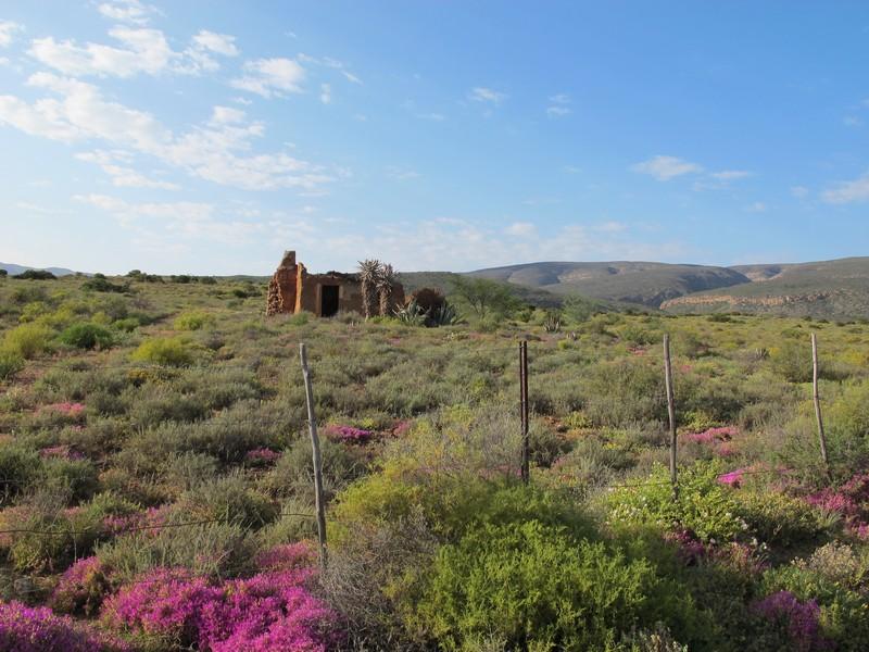 ферма в пустыне Малое Карру