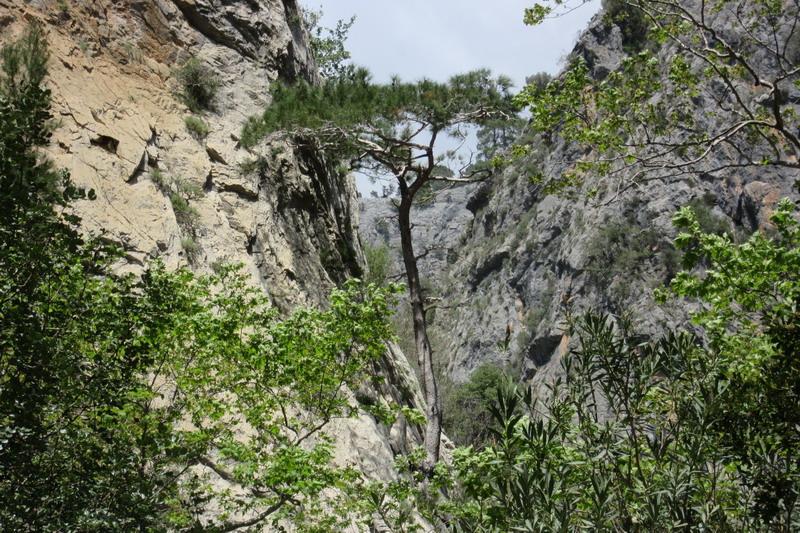 Аланья каньон Сападере