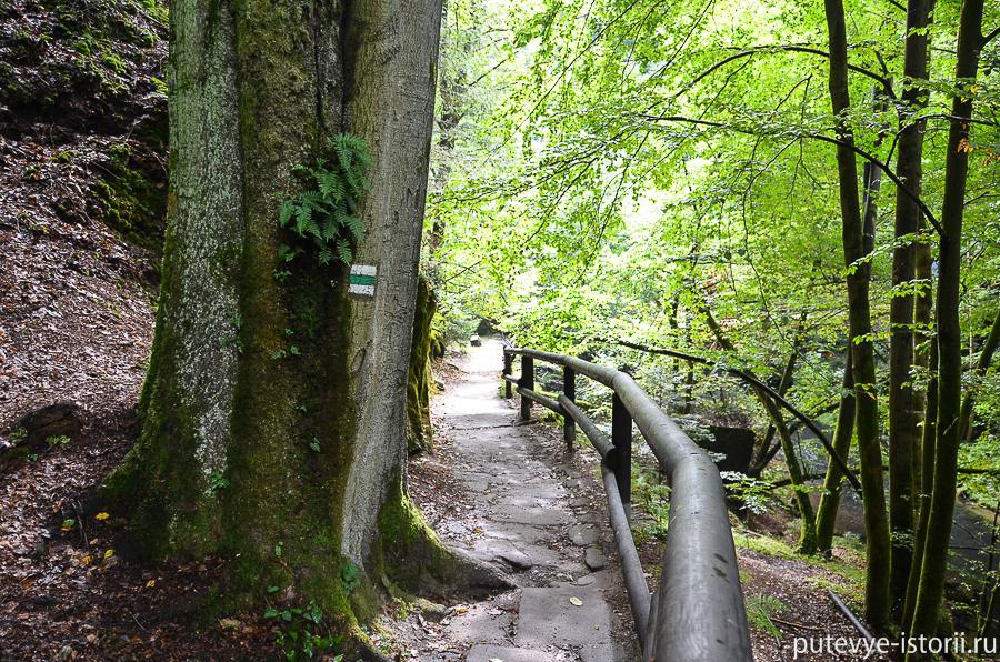 Спуск к реке Каменица