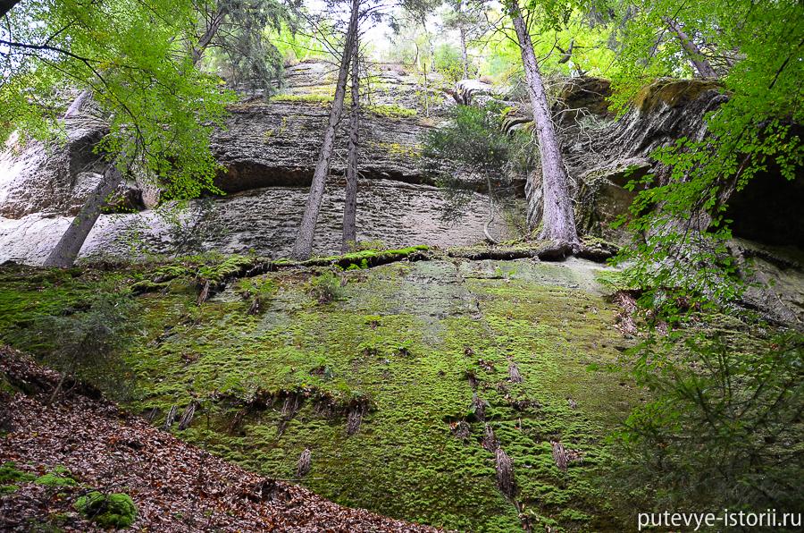 Скалы вдоль реки Каменицы
