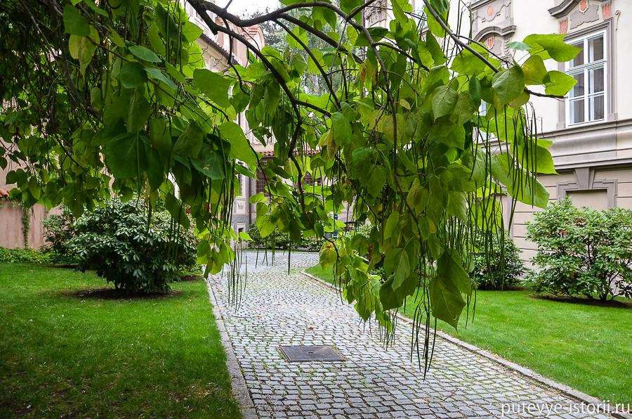 сады под Пражским градом