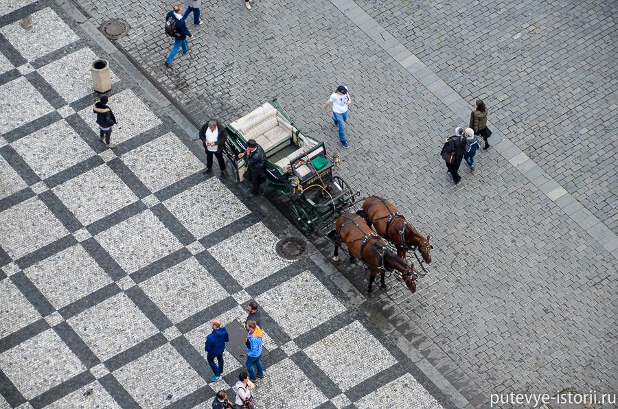 Извозчик на Староместской площади