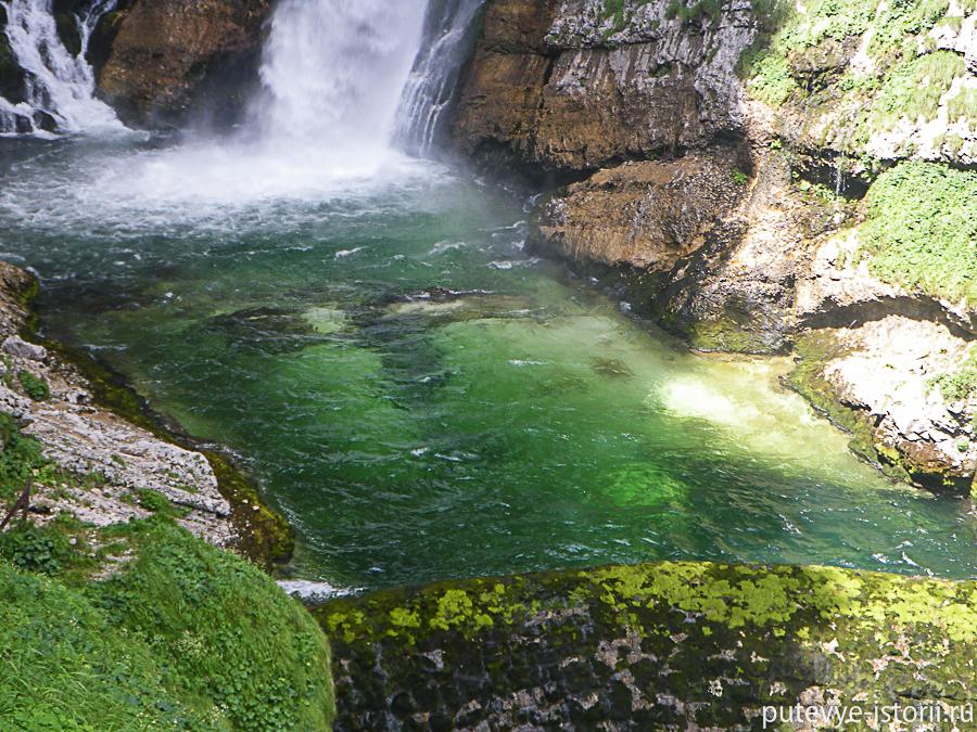 водопал Савица