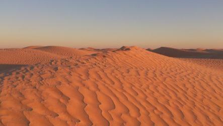 Тунис зимой — Сахара и Карфаген
