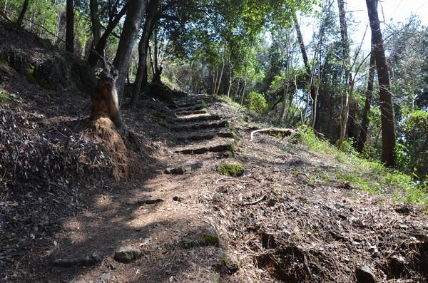 Парк Портофино. Путь в аббатство Сан-Фруттозо
