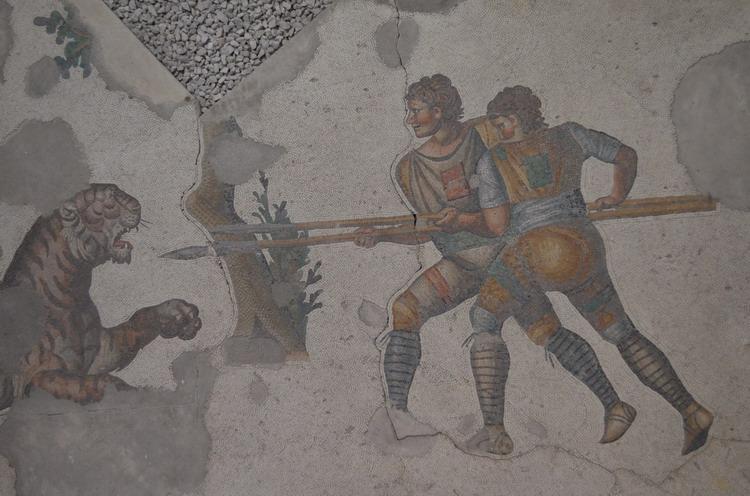Стамбул музей мозаики