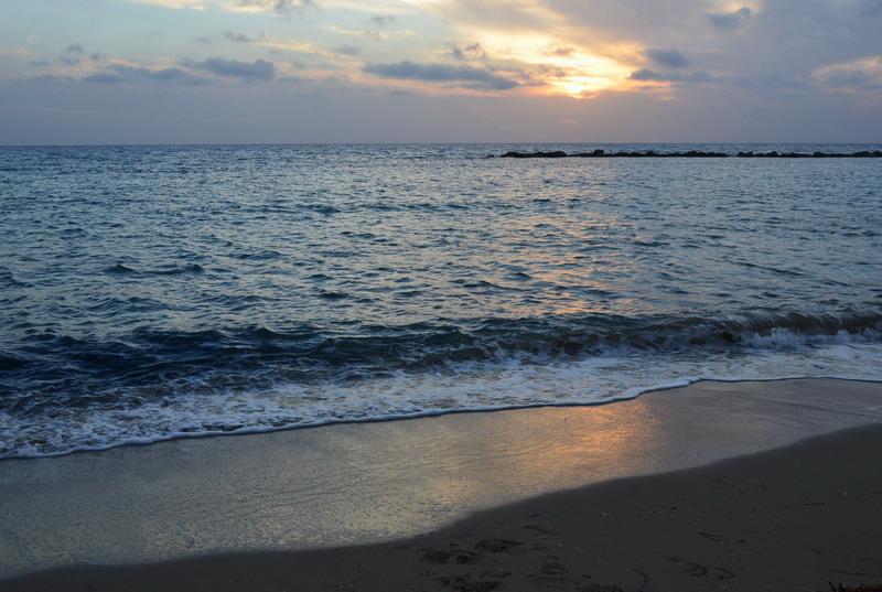Кипр зимой. Чем заняться и что посмотреть в Пафосе в феврале