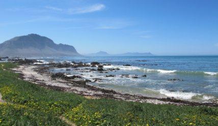 Путешествие по ЮАР, или «Да здравствует милая Африка!»