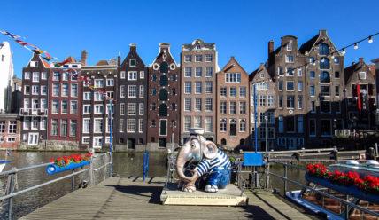 Один летний день в Амстердаме