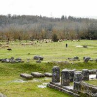 Блаженная Аркадия и город Мегалополис