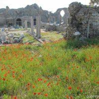 Майские праздники в Сиде. Что посмотреть в Сиде и окрестностях