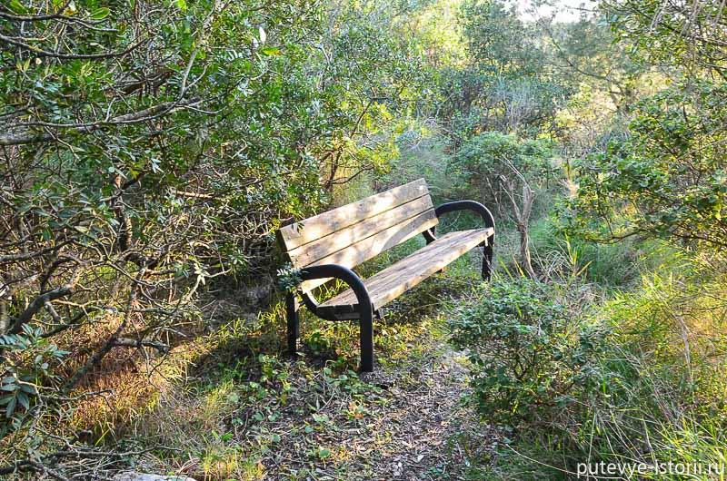 анакапри философский парк