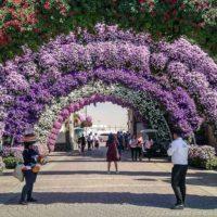 Парк цветов в Дубае. Попытка рая в пустыне