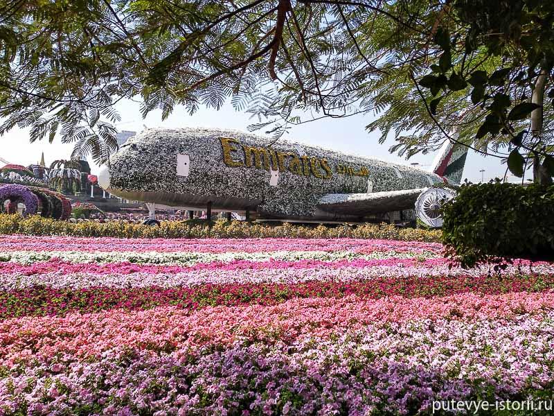 парк цветов самолет