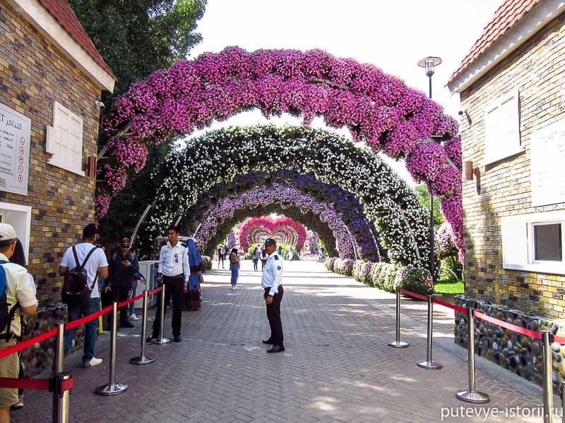 парк цветов в дубае вход