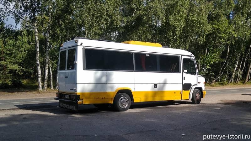 рейсовые автобусы на куршской косе