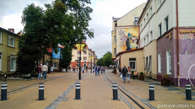 зеленоградск курортный проспект