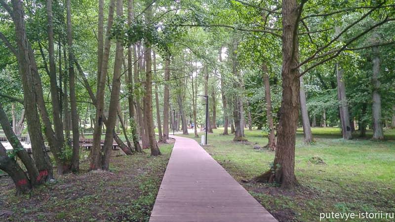 зеленоградск парк
