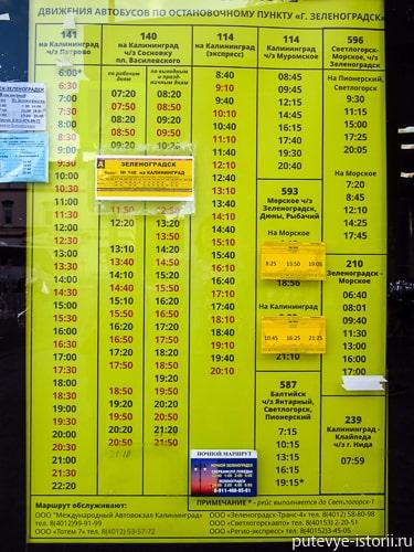 зеленоградск расписание автобусов